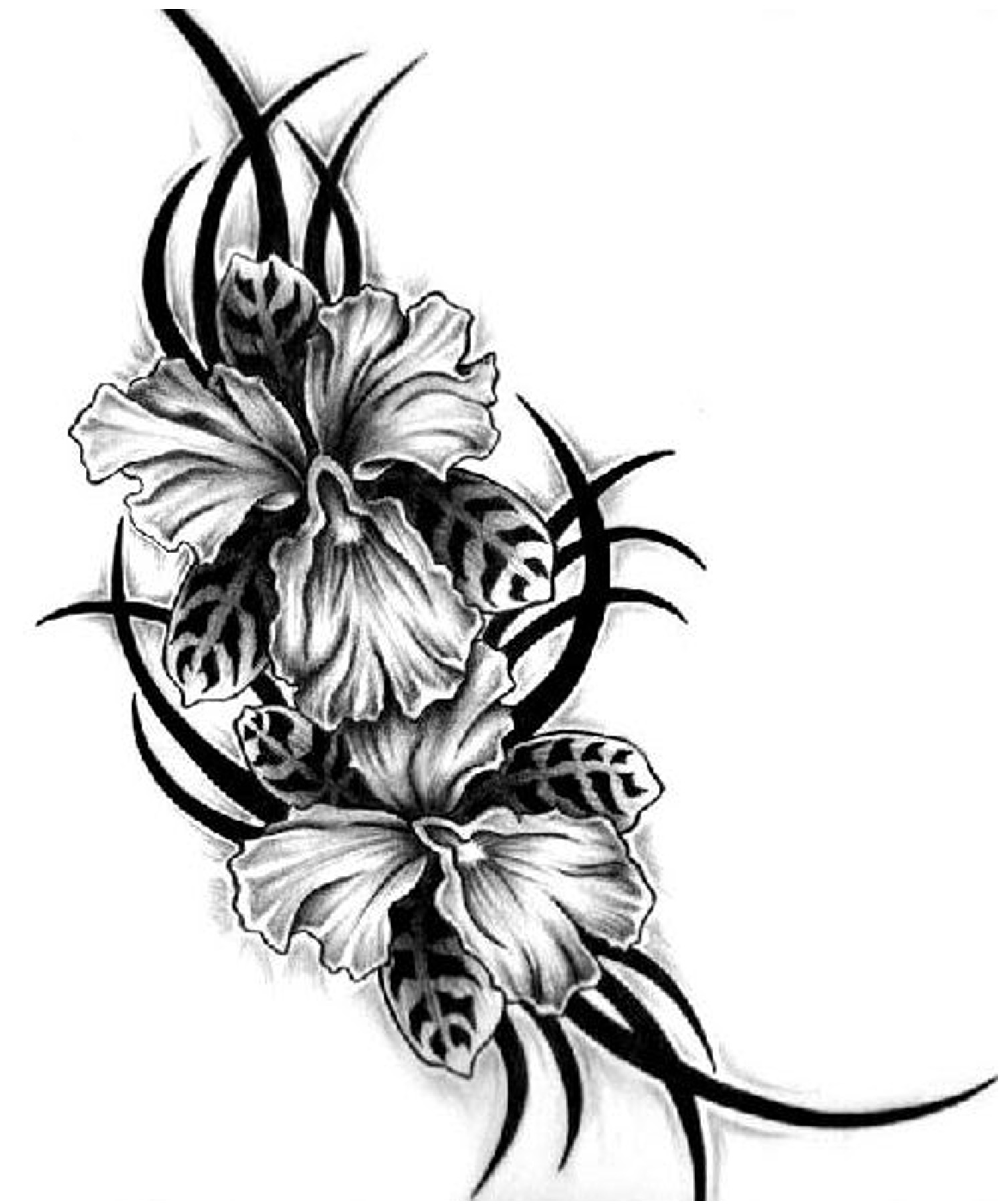 Flowers | Find the Latest News on Tribal Flowers at Permanent Tattoos ...